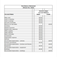 Thumbnail Size of Accounting Templates For Small Business Dairy Plan Template Trial Balance Excel