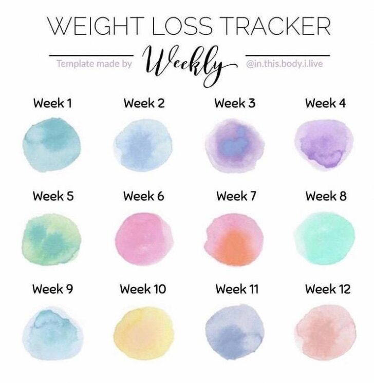 Medium Size of Inventory Spreadsheet How Do I Create An Excel Office Supply Weight Loss Tracker Template