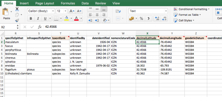 Medium Size of Management Spreadsheet Excel Project For Template