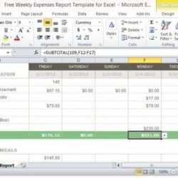 Free Weekly Expenses Report Template For Excel Spreadsheet Standard But Flexible Format