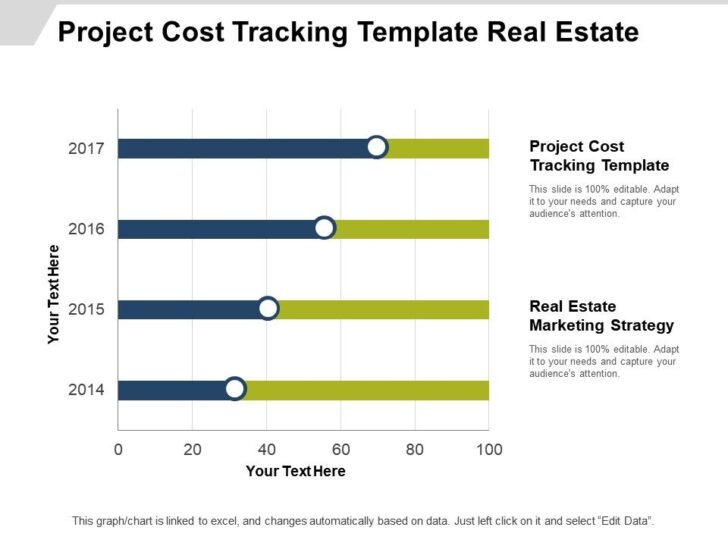 Medium Size of Project Cost Tracking Template Estate Marketing Strategy Cpb Powerpoint Templates Spreadsheet Expense